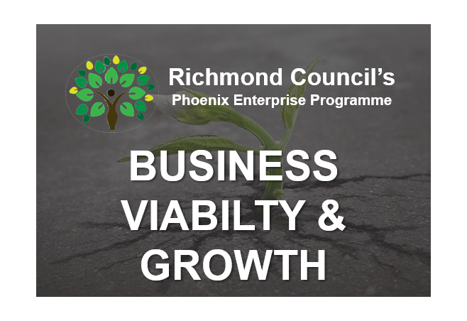 Business Viability and New Model for Growth